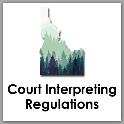 Court Interpreting Regulations